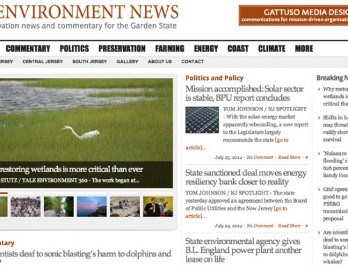 200,000 Views for NJ Environment News