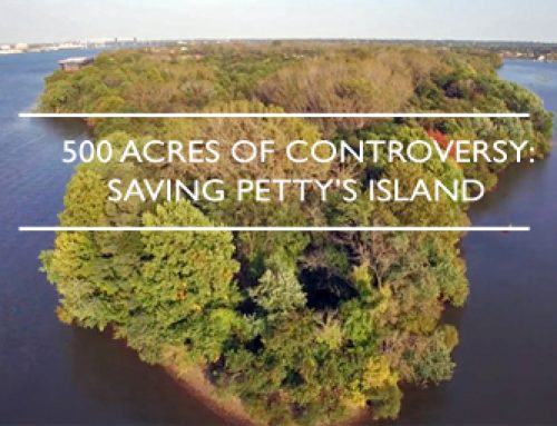 Trailer for 500 Acres of Controversy: Saving Petty's Island